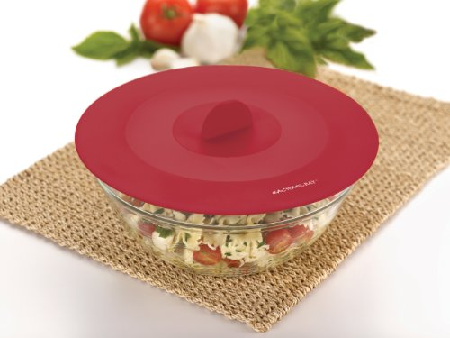 Rachael Ray Accessories 9-1/4-Inch Top This! Suction Lid,