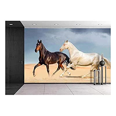 Amazing Work of Art, Premium Product, Group of Two Horse Run on Desert Against Beautiful Sky