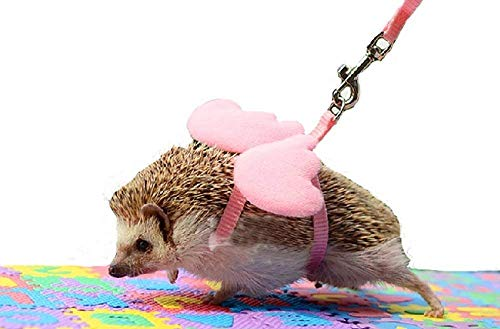 Lazynice African Mini Hedgehog Harness Angel Wing Nylon String Adjustable Training Playing Traction Rope Small Animal Outdoor Play (Pink)