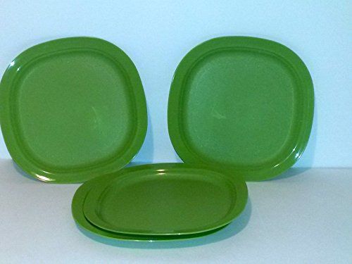 Microwaveable Lunch Plates Light Weight Indoor, Outdoor Anytime Use By Tupperware