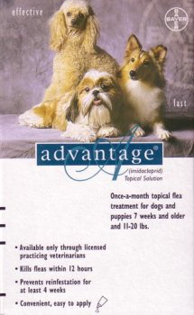 Teal Dog Flea Treatment - 4