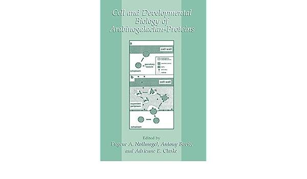 Cell and Developmental Biology of Arabinogalactan-Proteins