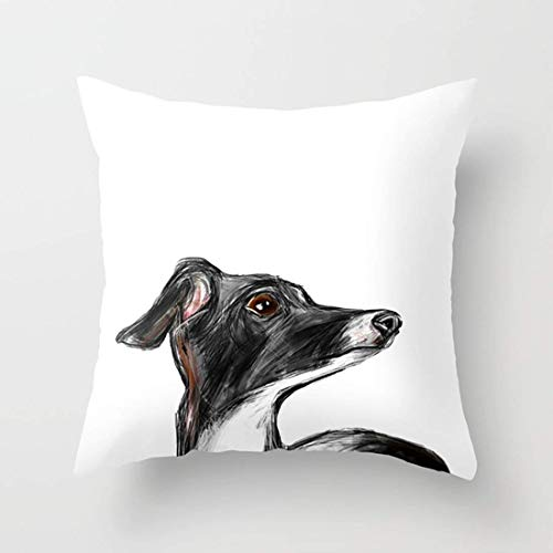 FJPT Throw Pillow Cover Simple Italian Greyhound Portraits Cotton Pillowslip for Sofa Bed Stand Size Pillowcase 18x18 Inch