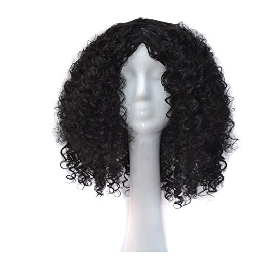 Black Curly Wig Costume (Curly Short Wigs, Inkach Women Girls Hair Wig Full Heat Resistant Charming Cosplay Costume Synthetic Wigs (Black))