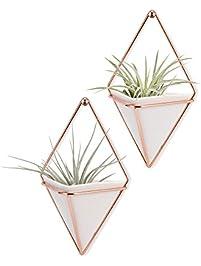 Gardening Pots Planters Accessories
