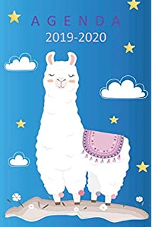 agenda 2019-2020: cuaderno de mujer, libreta para escribir ...