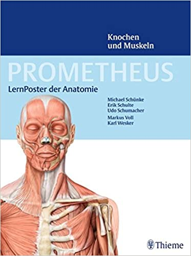 prometheus anatomie
