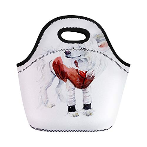 Semtomn Neoprene Lunch Tote Bag Adorable Chinese Crested Dog Red Costume Portrait Animals Watercolor Reusable Cooler Bags Insulated Thermal Picnic Handbag for Travel,School,Outdoors, Work -