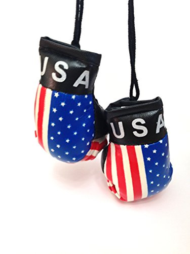 flagsandsouvenirs Boxing Gloves USA