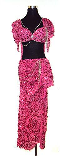 Belly Dancer Glitter Bra Top & Hip Belt Skirt Harem Costume Set --Pink 34 A,B by Belly Dance Costume