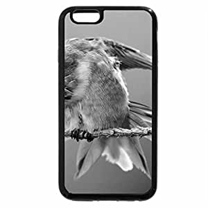 iPhone 6S Plus Case, iPhone 6 Plus Case (Black & White) - Humming Bird on the Branch