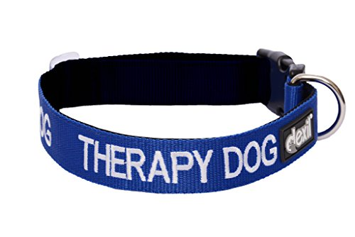 THERAPY DOG Blue Color Coded S-M L-XL Neoprene Padded Dog Collar PREVENTS Accidents By Warning Others of Your Dog in Advance (L-XL)