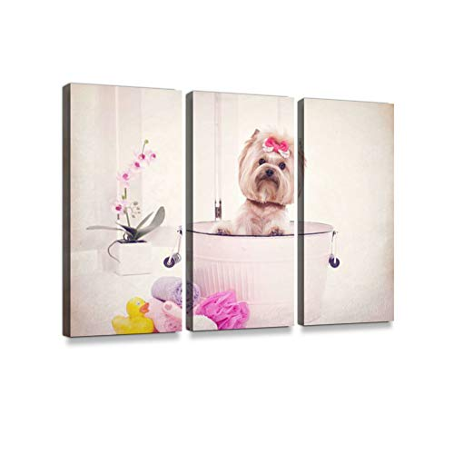 - Yorkie in wash bin Bathtub at The Dog Grooming salon3 Pieces Print On Canvas Wall Artwork Modern Photography Home Decor Unique Pattern Stretched and Framed 3 Piece
