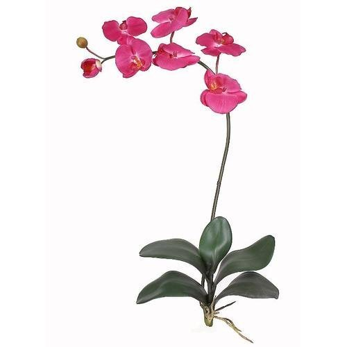 Nearly Natural 2044-BU Phalaenopsis Stem (Set of 6) Beauty by Nearly Natural