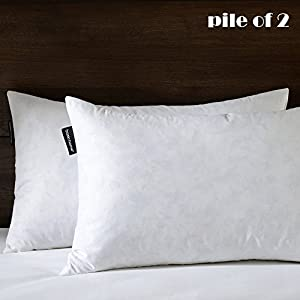 "12""X20"" Oblong Pillow Insert, 95% Feather 5% Down, 100% Cotton Fabric, Set of 2, White, BASIC HOME"