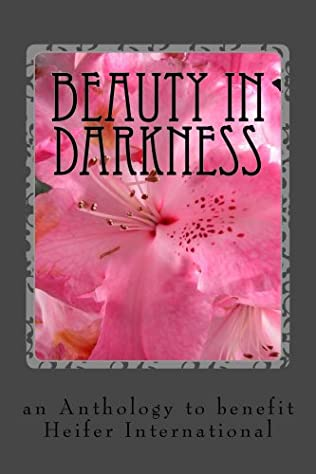 book cover of Beauty in Darkness
