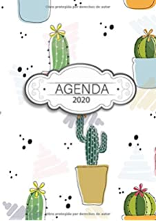 Amazon.com: Planificador Diario 2020: Agenda Diaria y ...