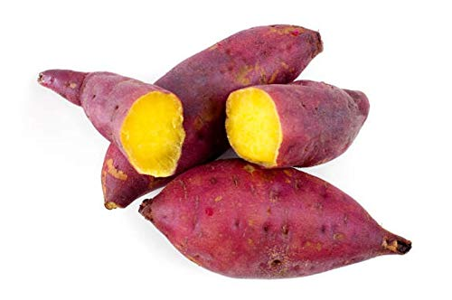 (kakroz Japanese Sweet Potatoes/Red Skin Yellow Yam,Sweet Potato Seeds. Excellent yields and Flavor. Stores Well. (5 lbs))