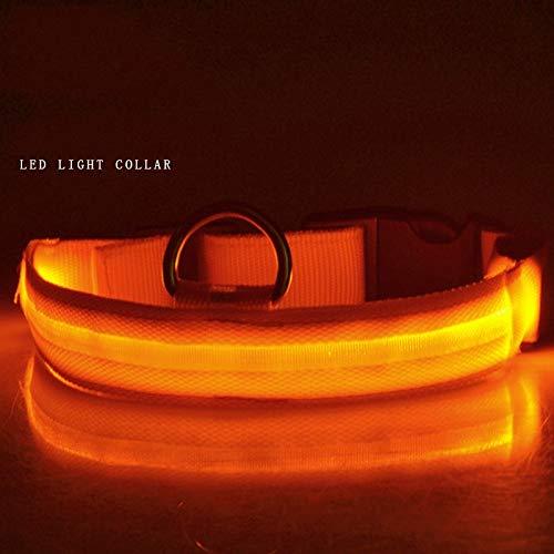 28-40 orange 28-40 orange Fancy Dog collarsDog Glow Collar, LED pet Night Light USB Charging Collar,orange,28-40leather Dog Collars for Medium Dogs
