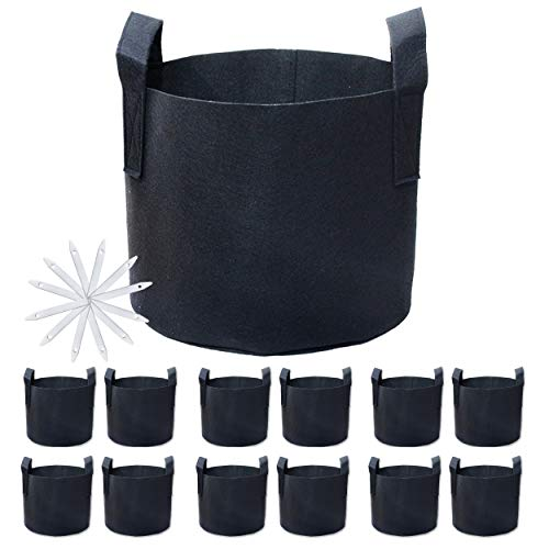 PHYEX 12-Pack 5 Gallon