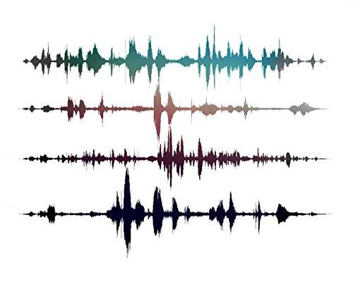 Soundwaves Sound Art 16x20x1 5 Heartbeat product image