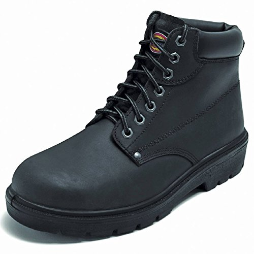 Dickies Antrim Super Safety Boot Brown PSRElniaM1