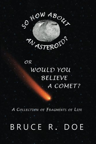 So How about an Asteroid? or Would You Believe a Comet?: A Collection of Fragments of Life