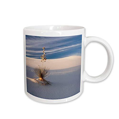 (3dRose Danita Delimont - Deserts - USA, New Mexico, White Sands, Sand Dune Patterns and Yucca Plants - 11oz Two-Tone Green Mug (mug_314943_7))
