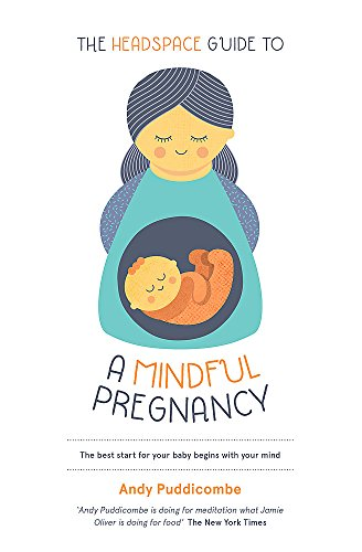 Book cover from The Headspace Guide To...A Mindful Pregnancy by Andy Puddicombe