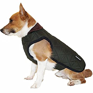 Pawberry Classic - Abrigo para Perro con arnés Integrado, 41 cm, Color Verde: Amazon.es: Productos para mascotas