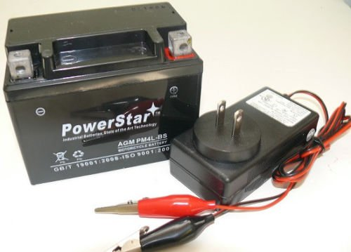 (YTX4L-BS Lawn Mower Battery for Snapper All Walk Behind Mowers + Extra Charger)