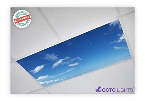 Cloud 020 2x4 Flexible Fluorescent Light Cover Ceiling Cloud Four Light