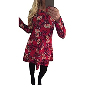 LaSuiveur Women's Christmas Santa Claus Print Pullover Flared A Line Dress