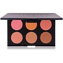 SHANY Cosmetics Fuchsia 6 Color Blush Palette, 8 Ounce