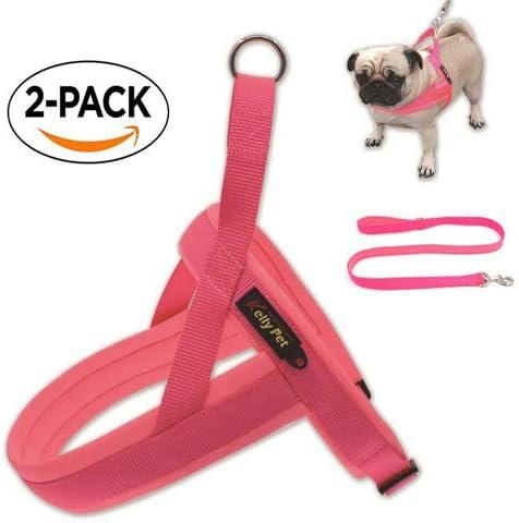 Kelly Mascotas arnés para Perro, Forma en T, diseño cómodo, arnés ...