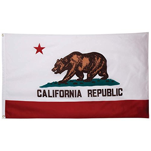 ca bear flag - 1