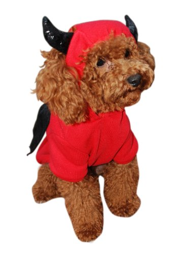 Anit Accessories Devil Bat Dog Costume, 12-Inch