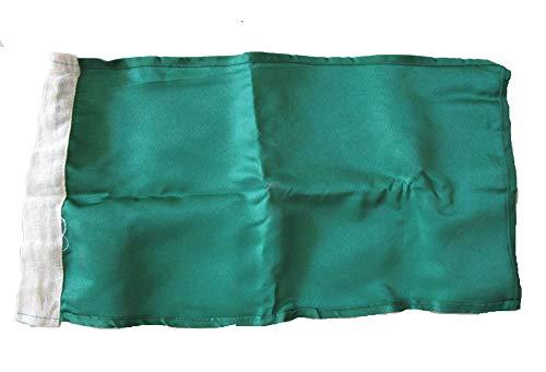"Brass Blessing Nascar Flag - Race Nascar Signal Flag - 8"" x 13"" - Sports Car Race Racking - 100% Cotton (Green)"