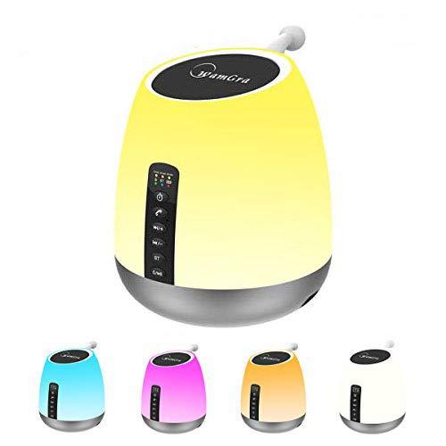 Bluetooth Speaker with Lights WamGra Night Light Bluetooth Speaker Smart Touch Control