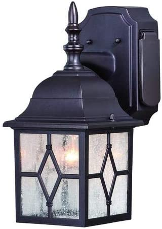 Galeana Oil-Rubbed Bronze 12.5 Outdoor Wall Light w GFCI Outlet