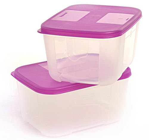 Tupperware Freezer Mate - 700ml (Set of 2Pcs)