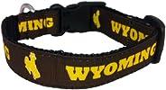 All Star Dogs NCAA Dog Collar