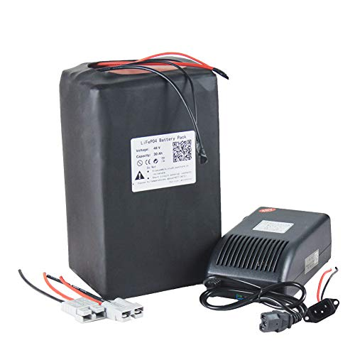 48V 30AH LiFePO4 Battery Pack for Motorcycle Electric Bicycle Scooter + Charger
