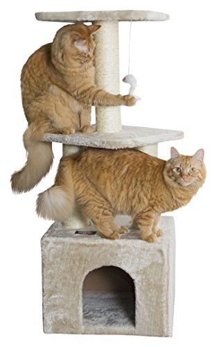 Majestic Pet Products 40 inch Beige Casita Cat Furniture Condo House Scratcher Multi Level Pet Activity Tree ()