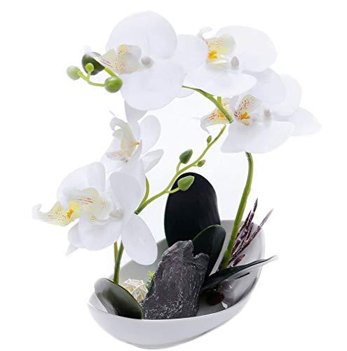 GXLMII Artificial Flowers Lifelike Real Touch Arrangement Phalaenopsis Bonsai Orchid Miniascape Home Decoration