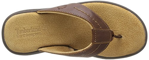 dc3860857e Timberland Men s Earthkeepers Altamont 2.0 Flip Thong Sandal - Buy ...
