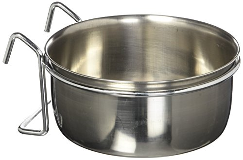 QT Dog Coop Cup with Hook, 20 oz. - Stainless Steel Coop Cup