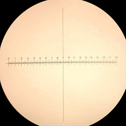 Color:Diameter 22mm 923 Optical Glass Calibration Slides DIV 0.1mm Eyepiece Reticle Micrometer Area Measuring Ruler Ocular Graticule for Microscope Mercury/_Group