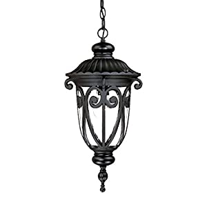 Acclaim 2116BK Naples Collection 1-Light Outdoor Light Fixture Hanging Lantern, Matte Black