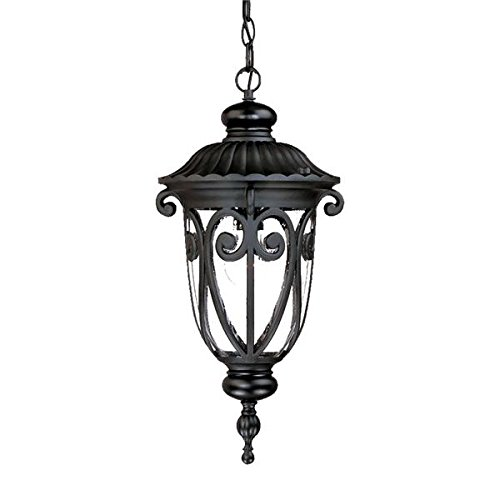 Acclaim 2116BK Naples Collection 1-Light Outdoor Light Fixture Hanging Lantern, Matte Black by Acclaim